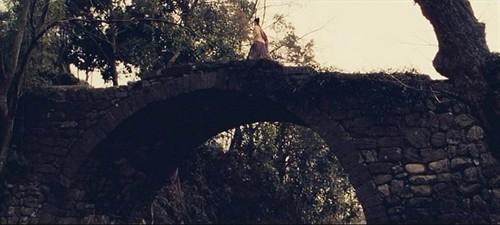 《剑雨》,我愿化身五百年石桥,等你走过