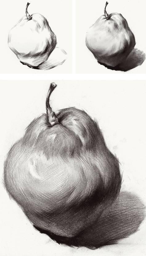 素描苹果结构图步骤