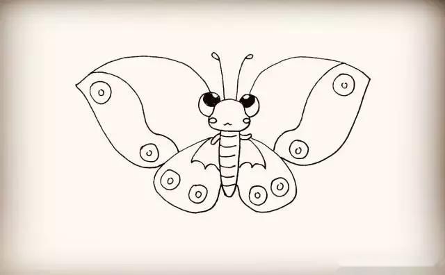 同样画出翅膀上的花纹.是波浪线和小圆圈注意位置.