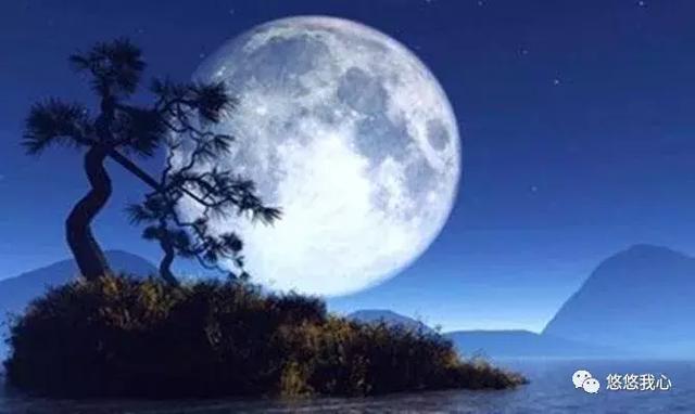 千江有水千江月.明月诗词,哪首最让你怦然心动?