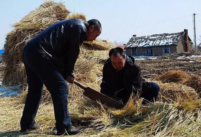 铡子也叫工具,是箱包碎草的农家.美女图片铡刀图片