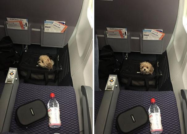 请乘客坐稳,绑好安全带. (来自:腾讯动漫)