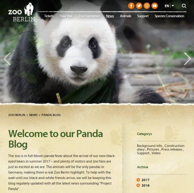 习近平出席柏林动物园大熊猫馆开馆仪式,德国人沸腾了