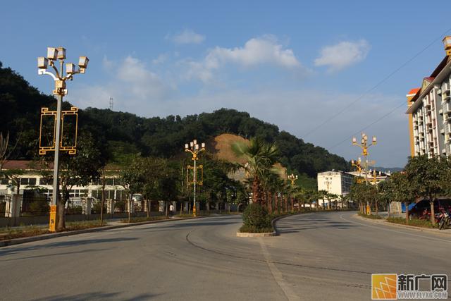 主要集中在莲花滩乡(560亩),瑶山乡(940亩),坝洒农场(730亩)公路沿线.