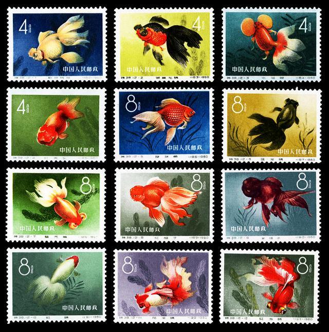 """邮票里的""""五朵金花"""",有一枚就赚了!"""