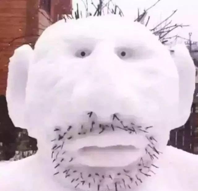 杭州保安下雪天堆出个动物园 网友:地域限制了才华 网络热点 第32张