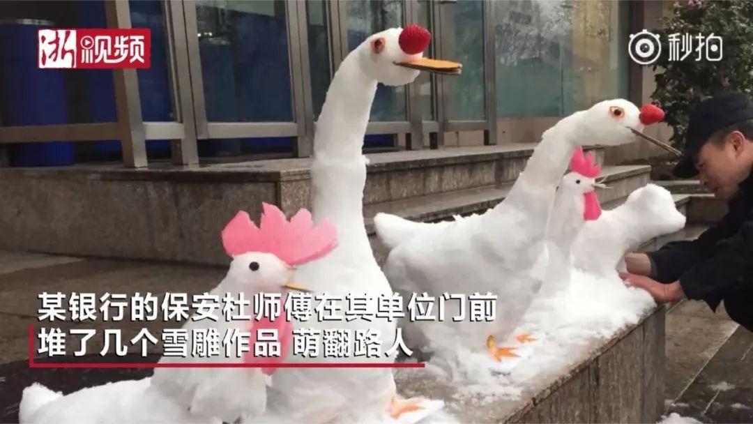 杭州保安下雪天堆出个动物园 网友:地域限制了才华 网络热点 第2张