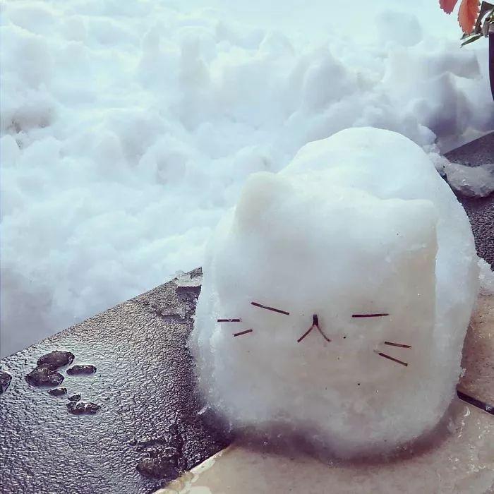 杭州保安下雪天堆出个动物园 网友:地域限制了才华 网络热点 第35张