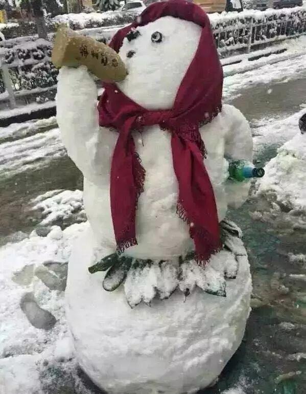 杭州保安下雪天堆出个动物园 网友:地域限制了才华 网络热点 第27张