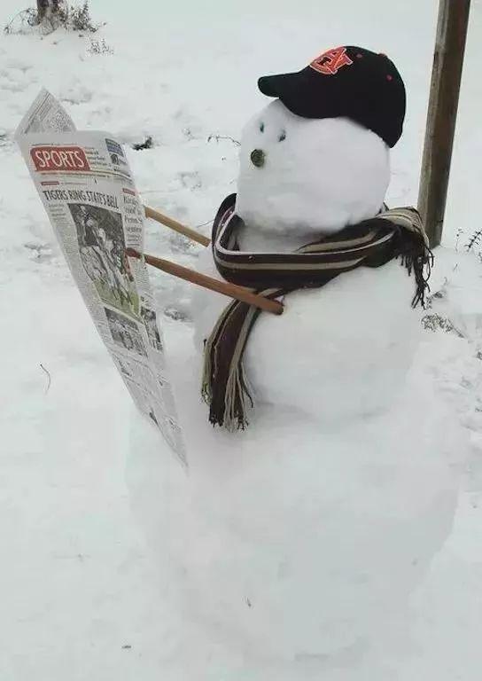 杭州保安下雪天堆出个动物园 网友:地域限制了才华 网络热点 第23张
