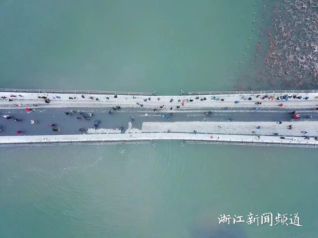 真•断桥残雪终于出现了(美哭!), 西湖边已是人从众人人从众从众人人人 网络热点 第10张