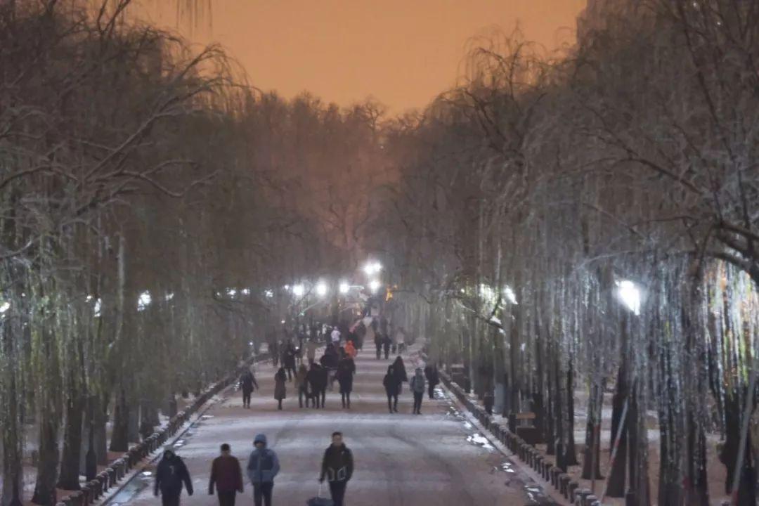 真•断桥残雪终于出现了(美哭!), 西湖边已是人从众人人从众从众人人人 网络热点 第14张